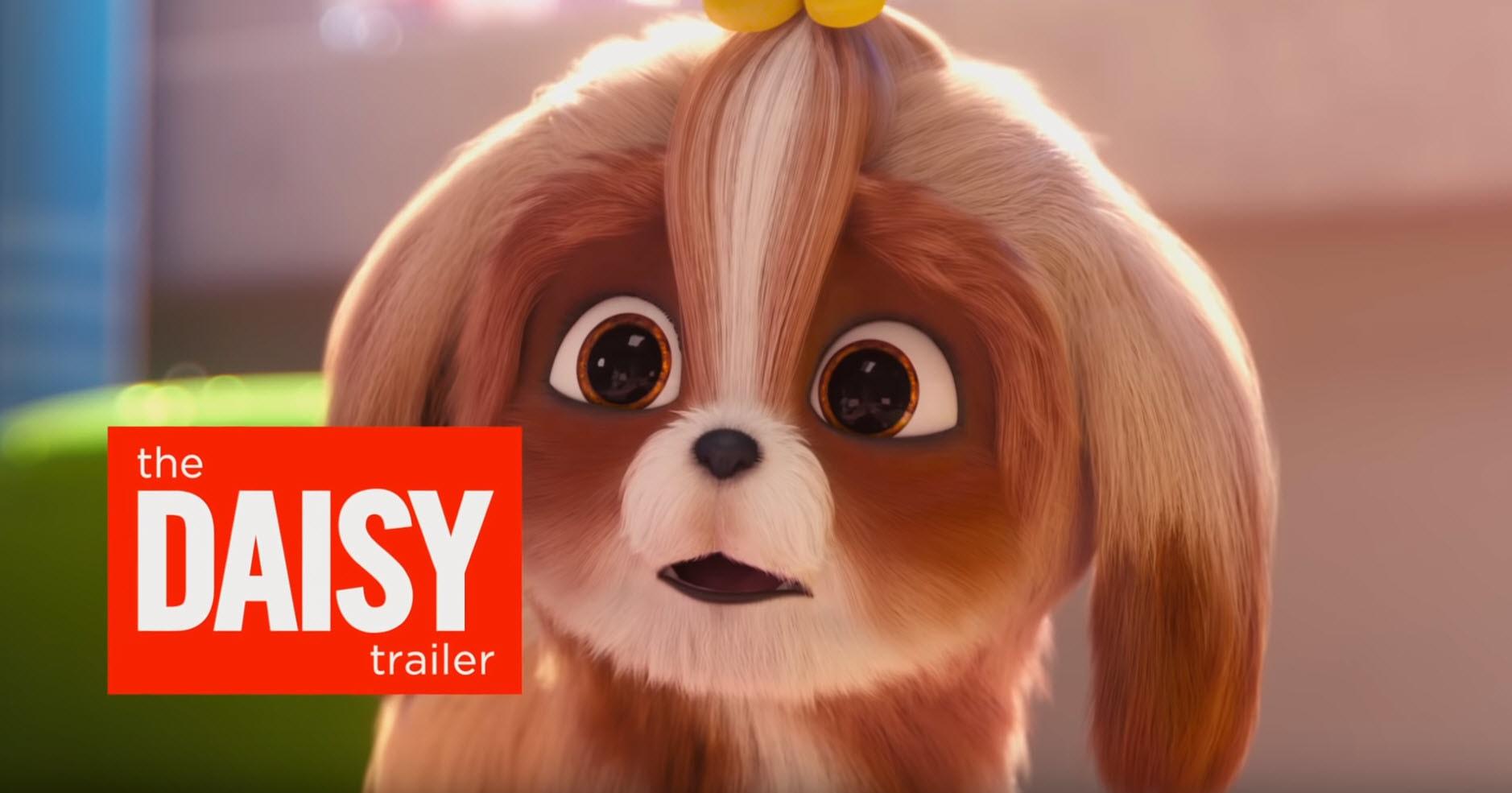 DAISY Trailer